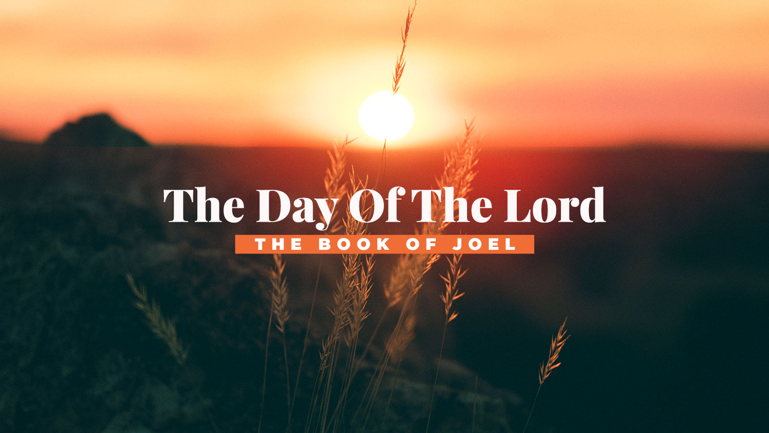 The Day Of The Lord Image