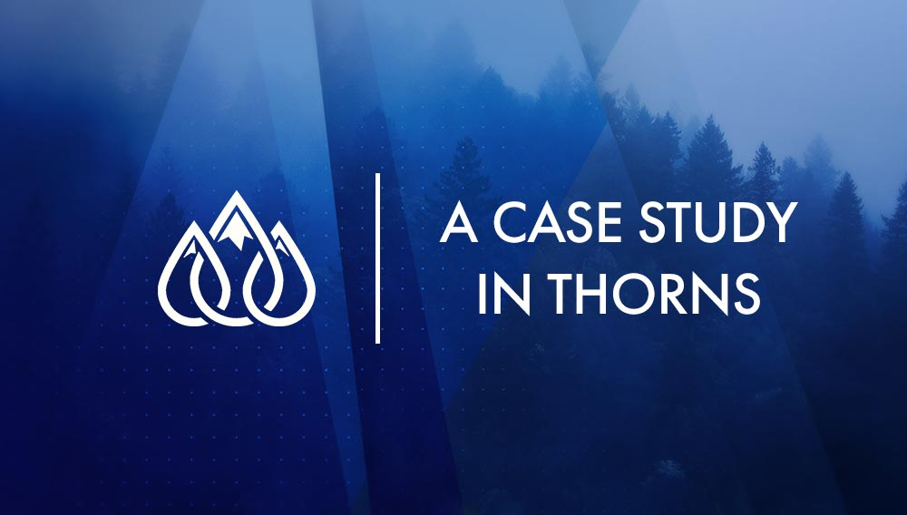 A Case Study in Thorns Image